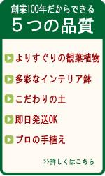 5つの品質
